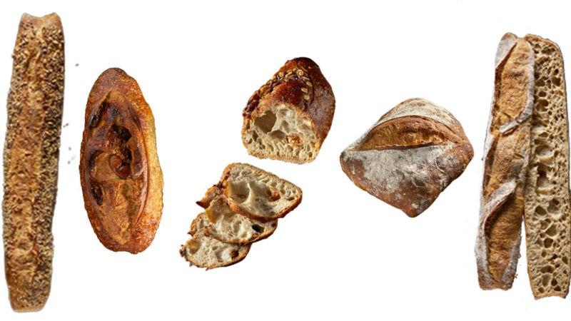 les pains l'atelier papilles